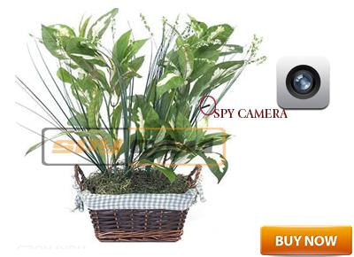 Spy Secret Hidden Fake Money Plant Camera In Delhi India