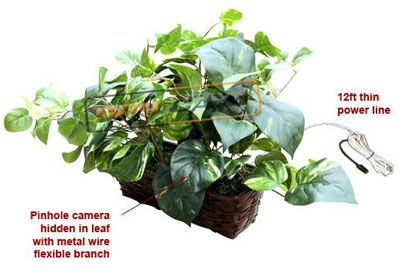 Spy Fake Money Plant Camera